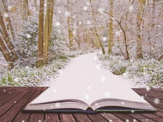 BONNE ANNEE avec ce nouveau chemin que nous allons écrire progressivement sur le livre de nos vies 2021 !